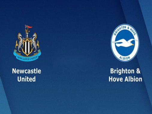 Dự đoán bóng đá Newcastle vs Brighton 21h00 ngày 20/10