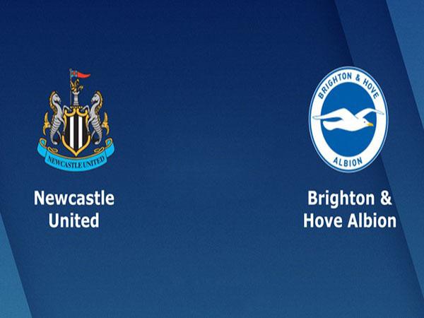 Nhận định Newcastle vs Brighton