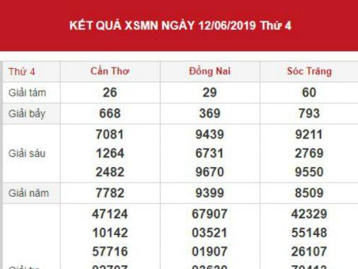 Dự đoán kết quả XSMN Vip ngày 19/06/2019