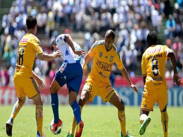 Dự đoán bóng đá Puebla vs Tigres UANL, 07h00 ngày 14/8