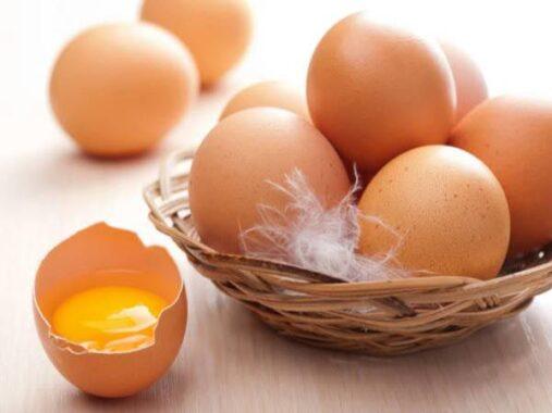 Nằm mơ thấy trứng gà đánh con gì, có điềm báo gì ăn chắc