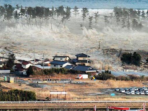 Nằm mơ thấy sóng thần chơi xổ số con gì dễ trúng nhất